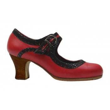 Flamenco dance shoe...